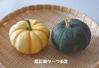 中村先生)カボチャブログ.jpg