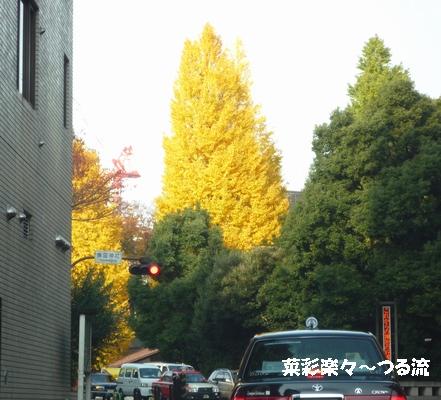 2010.11.25 靖国ブログ.jpg