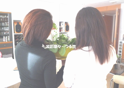 2011.1.12 ベジシャス01ブログ2.jpg