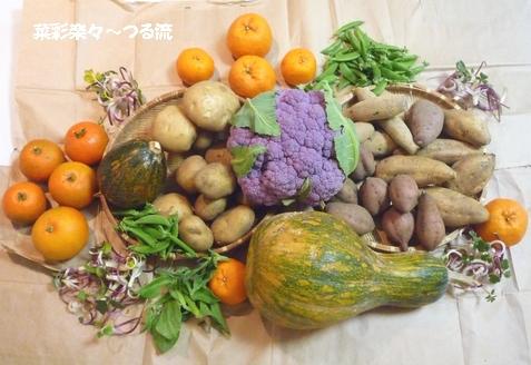 2011.2.4 種子島食材02ブログ P1160121.jpg