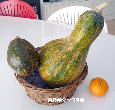 2011.2.4 種子島食材03ブログ P1160150.jpg