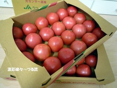 とちぎトマト02 P1190106.jpg