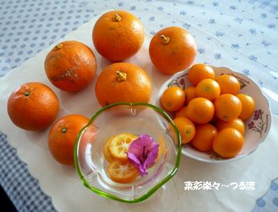 宮崎ブログ01 P1160758.jpg