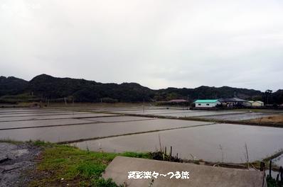 種子島ライブ10ブログ P1160731.jpg
