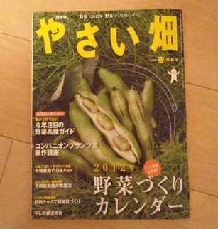 野菜畑01 P1230421.jpg